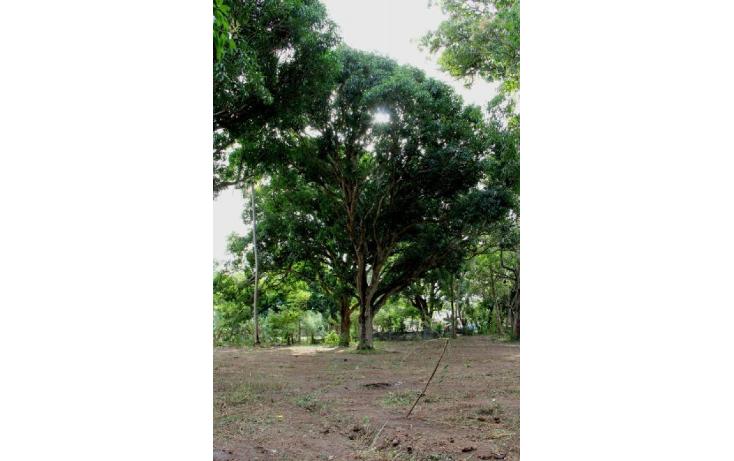 Foto de terreno comercial en venta en  , playa de vacas, medell?n, veracruz de ignacio de la llave, 1837454 No. 06