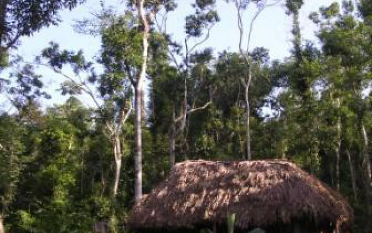 Foto de terreno habitacional en venta en, playa del carmen centro, solidaridad, quintana roo, 1055769 no 04
