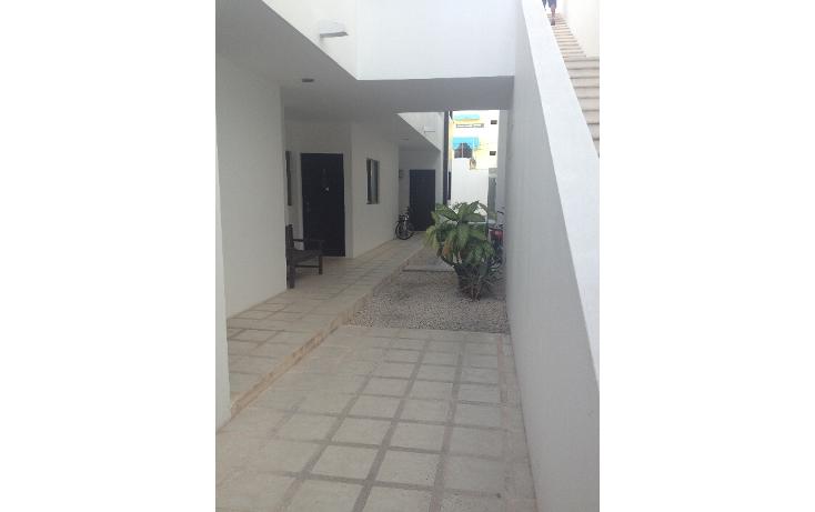 Foto de departamento en renta en  , playa del carmen centro, solidaridad, quintana roo, 1099417 No. 15