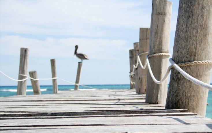 Foto de departamento en venta en, playa del carmen centro, solidaridad, quintana roo, 1146479 no 10