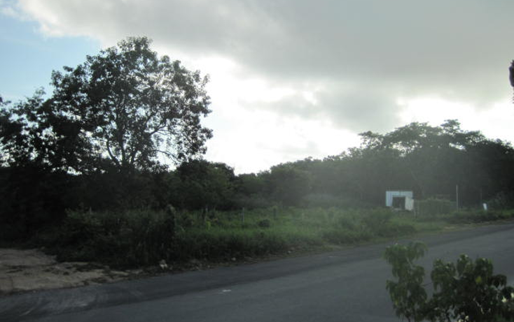 Foto de terreno comercial en venta en  , playa del carmen centro, solidaridad, quintana roo, 1168431 No. 06
