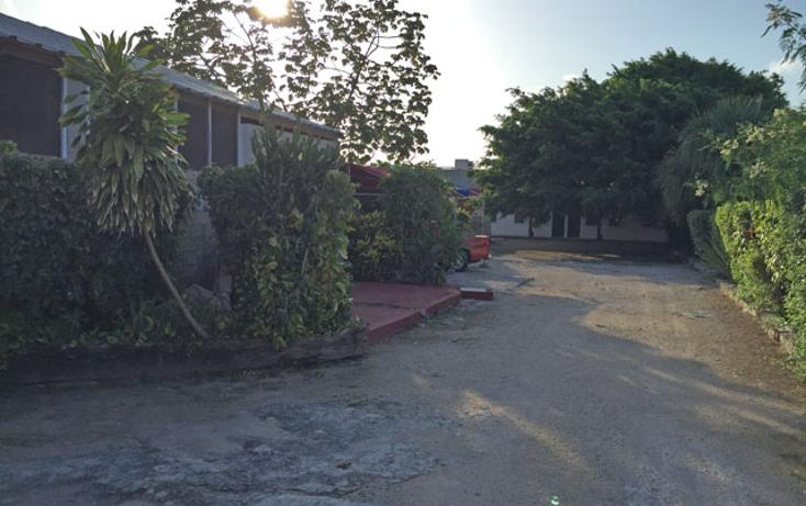 Foto de edificio en venta en  , playa del carmen centro, solidaridad, quintana roo, 1179563 No. 06