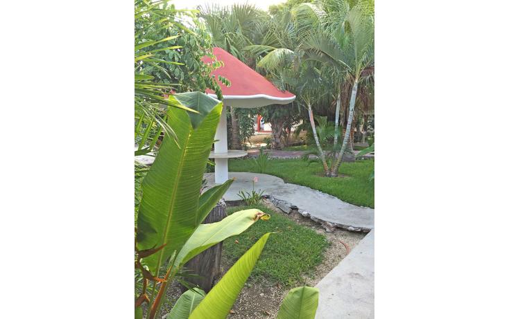 Foto de edificio en venta en  , playa del carmen centro, solidaridad, quintana roo, 1179563 No. 10