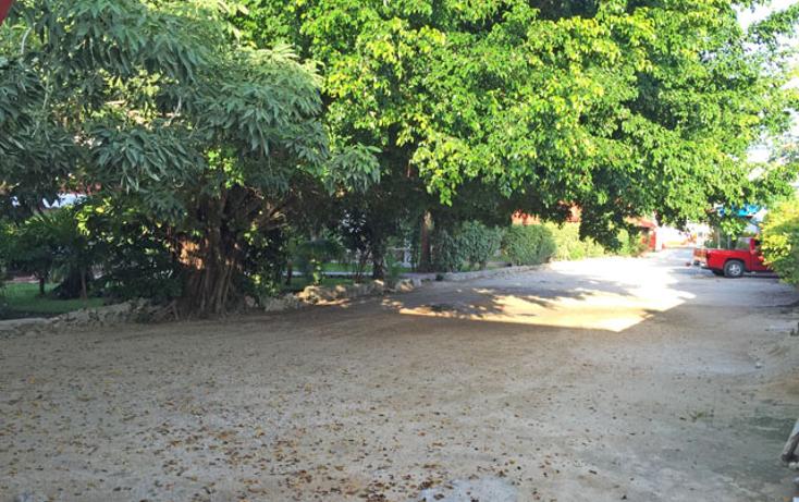Foto de edificio en venta en  , playa del carmen centro, solidaridad, quintana roo, 1179563 No. 15