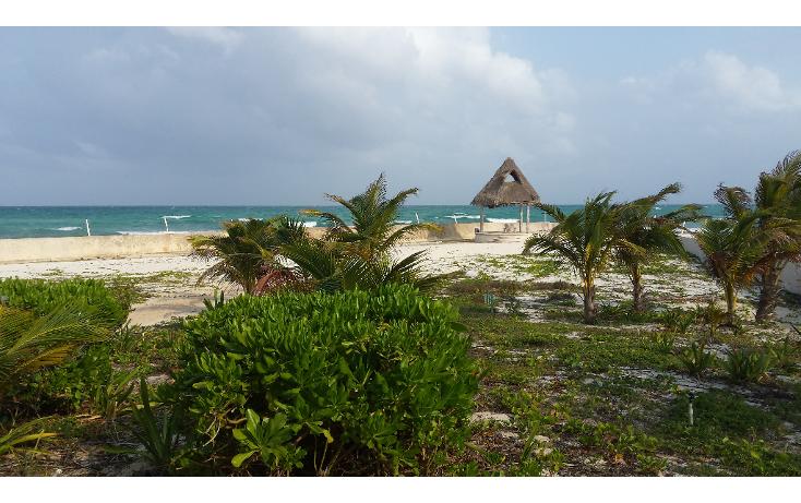 Foto de terreno comercial en venta en  , playa del carmen centro, solidaridad, quintana roo, 1207531 No. 01