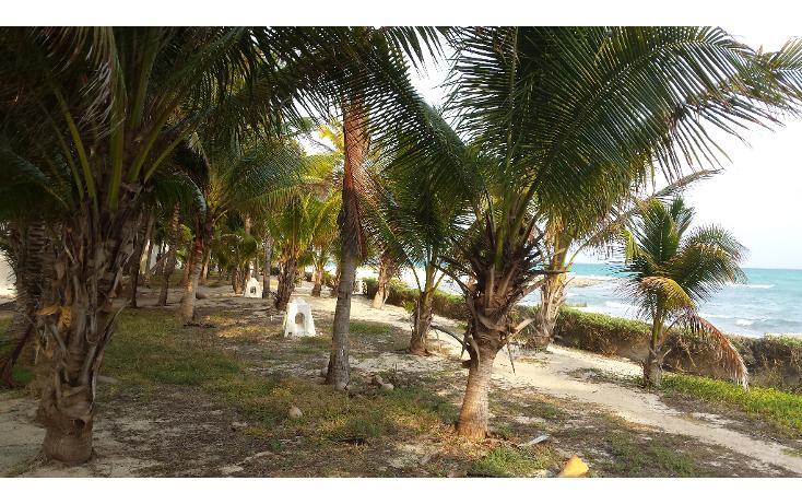 Foto de terreno comercial en venta en  , playa del carmen centro, solidaridad, quintana roo, 1207531 No. 04