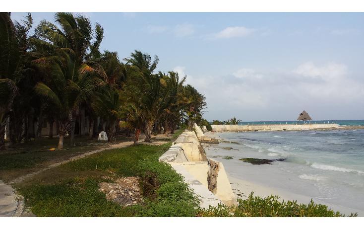 Foto de terreno comercial en venta en  , playa del carmen centro, solidaridad, quintana roo, 1207531 No. 05
