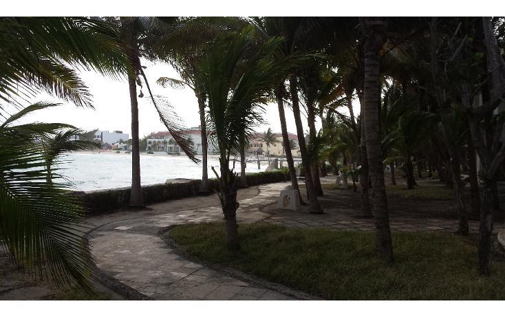 Foto de terreno comercial en venta en  , playa del carmen centro, solidaridad, quintana roo, 1207531 No. 06