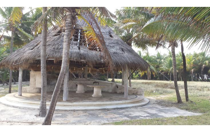 Foto de terreno comercial en venta en  , playa del carmen centro, solidaridad, quintana roo, 1207531 No. 08