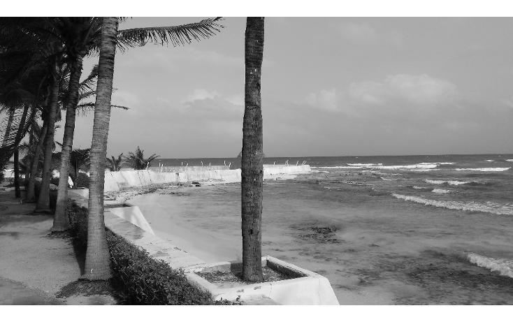 Foto de terreno comercial en venta en  , playa del carmen centro, solidaridad, quintana roo, 1207531 No. 11