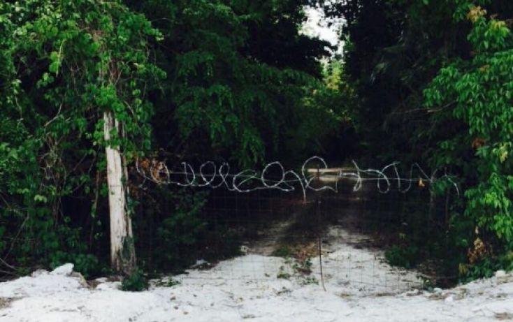 Foto de terreno comercial en venta en, playa del carmen centro, solidaridad, quintana roo, 1308299 no 03