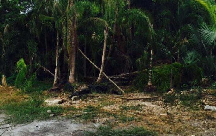 Foto de terreno comercial en venta en, playa del carmen centro, solidaridad, quintana roo, 1308299 no 04