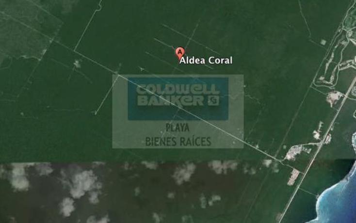 Foto de terreno comercial en venta en  , playa del carmen centro, solidaridad, quintana roo, 1842308 No. 05
