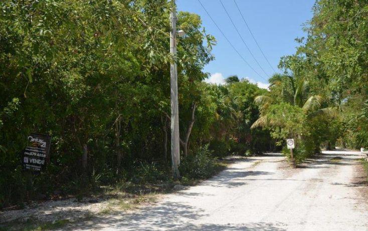 Foto de terreno habitacional en venta en, playa del carmen centro, solidaridad, quintana roo, 1862924 no 01
