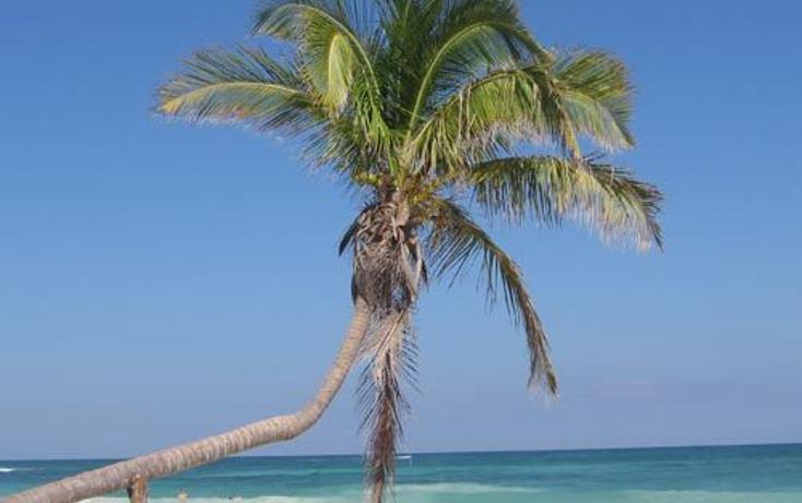 Foto de local en venta en  , playa del carmen centro, solidaridad, quintana roo, 765215 No. 04