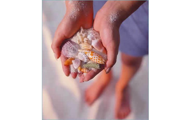 Foto de local en venta en  , playa del carmen centro, solidaridad, quintana roo, 765215 No. 06