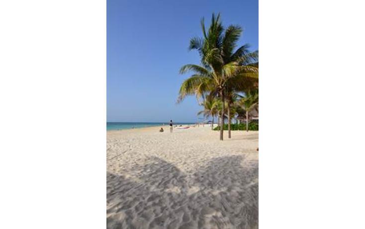 Foto de departamento en venta en  , playa del carmen centro, solidaridad, quintana roo, 783437 No. 22