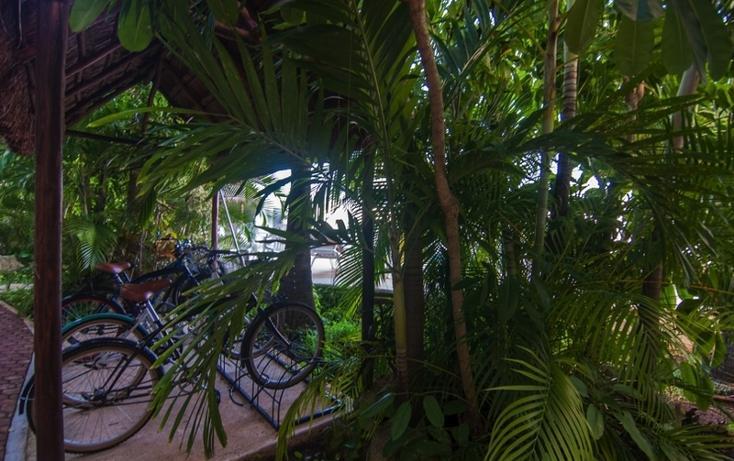Foto de departamento en venta en  , playa del carmen centro, solidaridad, quintana roo, 823711 No. 05