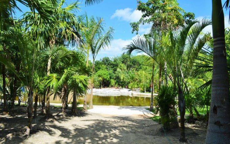 Foto de terreno comercial en venta en, playa del carmen, solidaridad, quintana roo, 1624786 no 09
