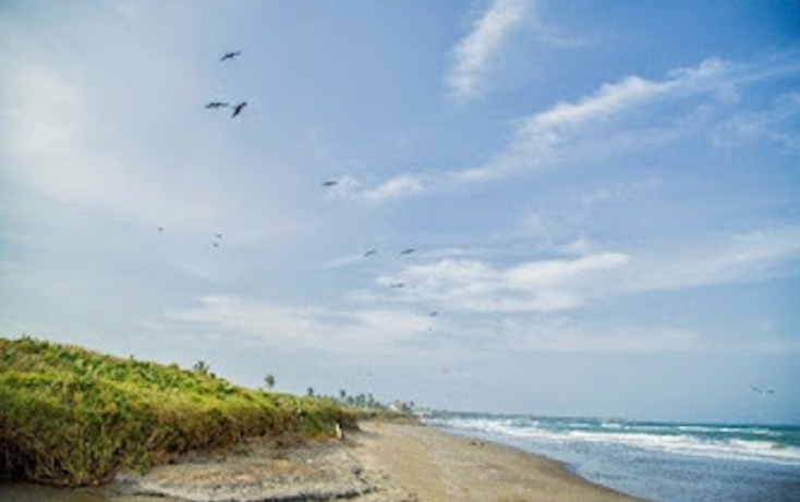 Foto de terreno habitacional en venta en  , playa dorada, alvarado, veracruz de ignacio de la llave, 1533008 No. 06