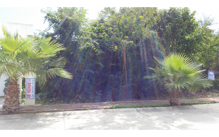 Foto de terreno habitacional en venta en  , playa magna, solidaridad, quintana roo, 1110441 No. 04