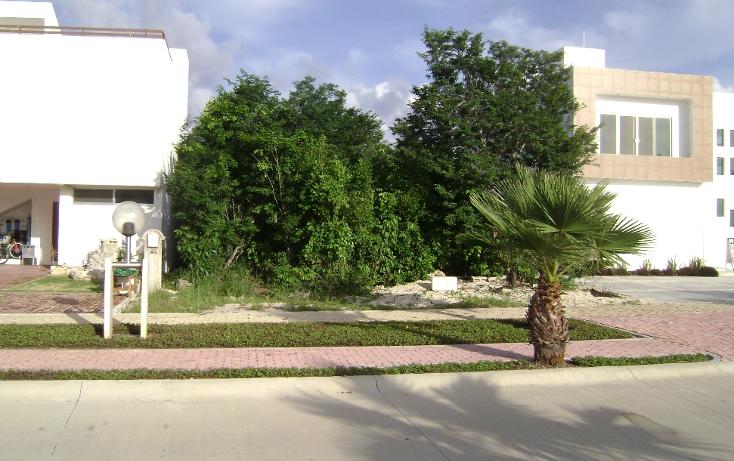 Foto de terreno habitacional en venta en  , playa magna, solidaridad, quintana roo, 1130879 No. 03