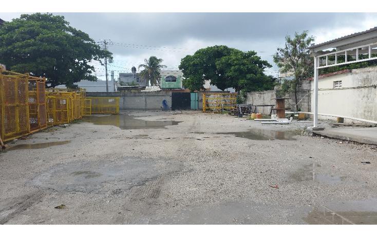 Foto de terreno habitacional en renta en  , playa norte, carmen, campeche, 1374147 No. 01