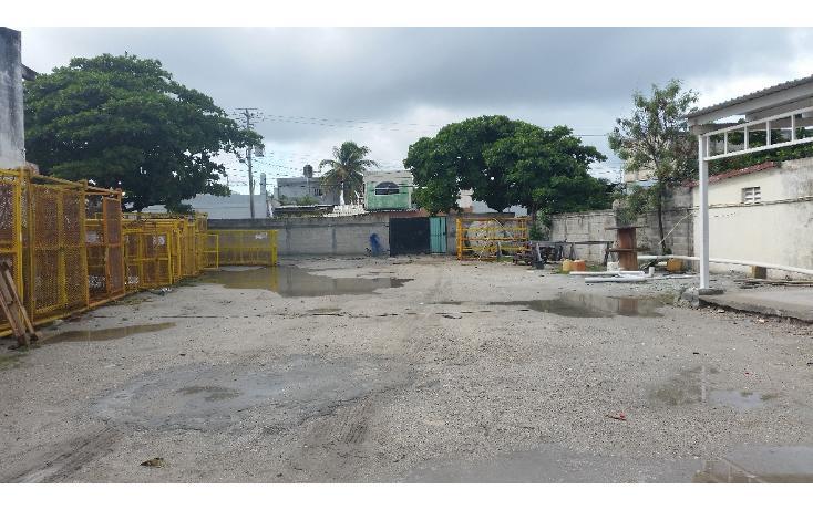 Foto de terreno habitacional en renta en  , playa norte, carmen, campeche, 1374147 No. 03