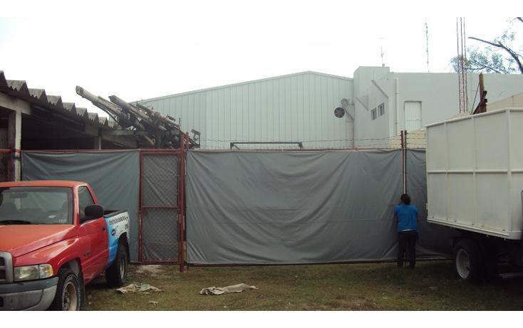 Foto de terreno industrial en renta en  , playa norte, carmen, campeche, 2031058 No. 03