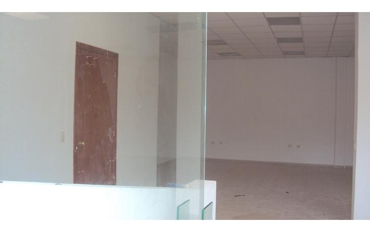 Foto de terreno industrial en renta en  , playa norte, carmen, campeche, 2031058 No. 07