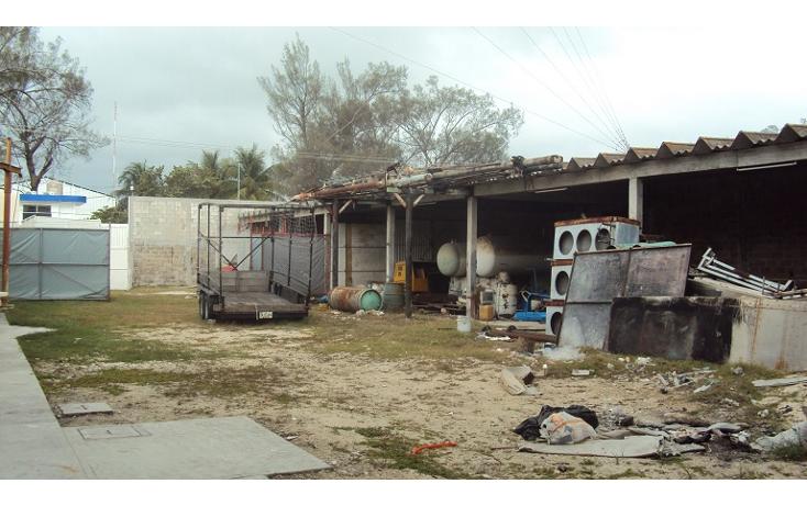 Foto de terreno industrial en renta en  , playa norte, carmen, campeche, 2031058 No. 12