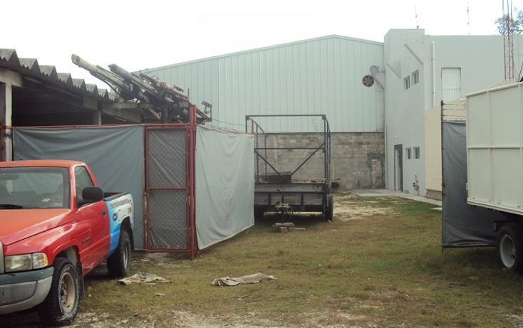 Foto de terreno industrial en renta en, playa norte, carmen, campeche, 2031058 no 13