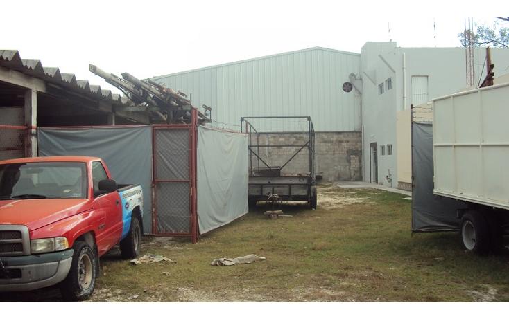 Foto de terreno industrial en renta en  , playa norte, carmen, campeche, 2031058 No. 13