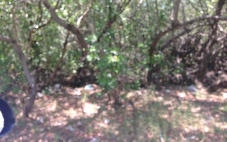Foto de terreno habitacional en venta en  , playa norte, carmen, campeche, 453297 No. 04