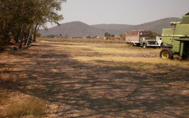 Foto de terreno comercial en venta en  , plaza solidaridad, cuautla, morelos, 1080367 No. 02