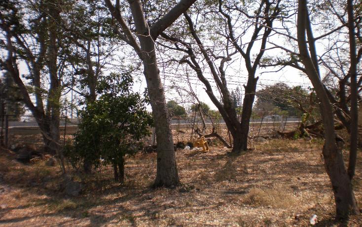 Foto de terreno comercial en venta en  , plaza solidaridad, cuautla, morelos, 1080367 No. 04
