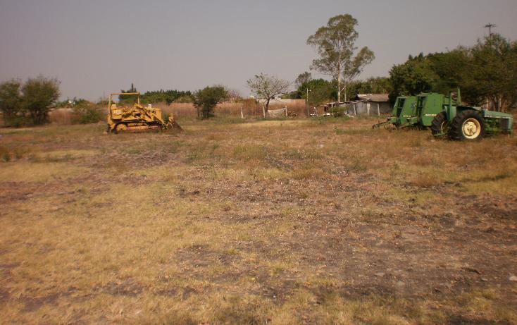 Foto de terreno comercial en venta en  , plaza solidaridad, cuautla, morelos, 1080367 No. 06