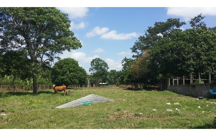 Foto de terreno comercial en renta en  , plutarco elías calles (la majahua), centro, tabasco, 1440285 No. 03