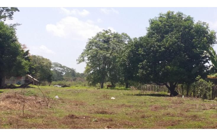 Foto de terreno comercial en renta en  , plutarco elías calles (la majahua), centro, tabasco, 1440285 No. 04