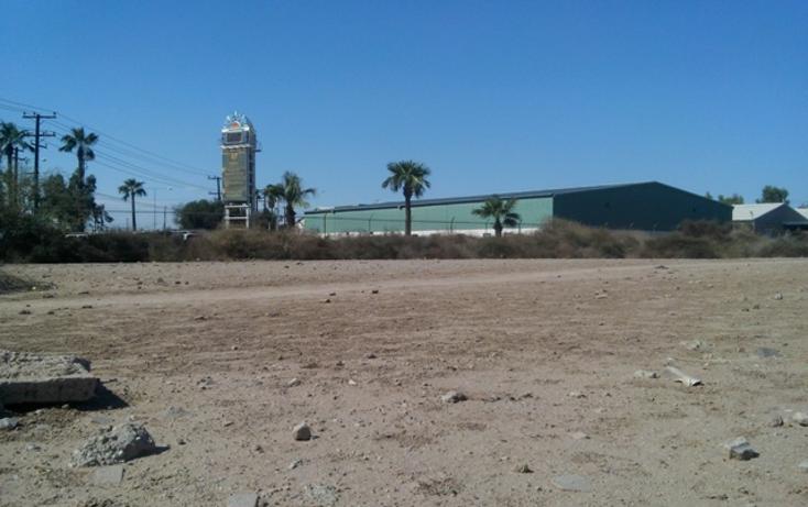 Foto de terreno comercial en venta en  , plutarco elías calles, mexicali, baja california, 1119253 No. 06