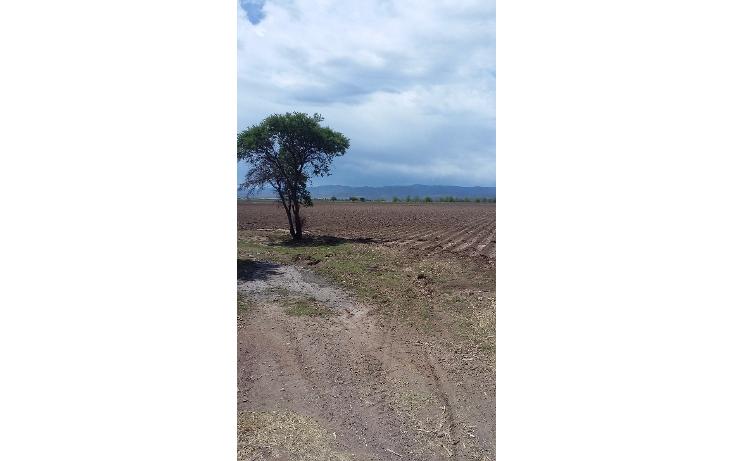 Foto de casa en venta en  , poblado ejido benito ju?rez, durango, durango, 1893470 No. 04