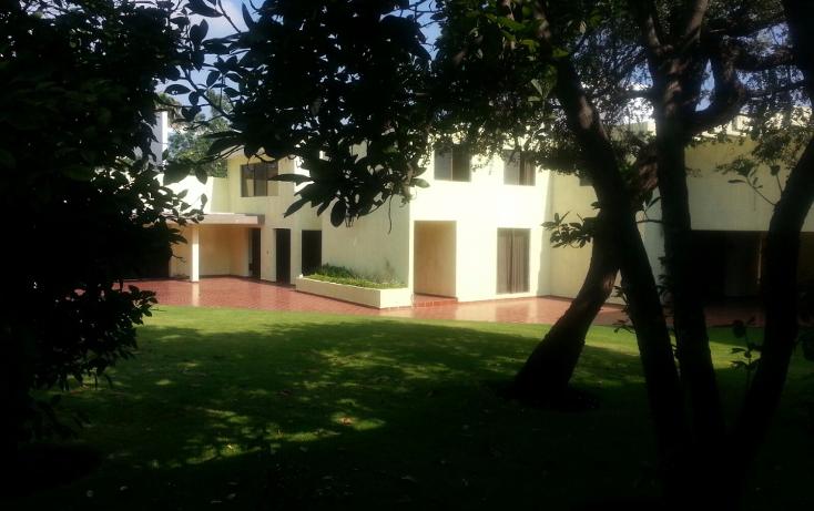 Foto de oficina en renta en  , polanco, san luis potosí, san luis potosí, 1337381 No. 08