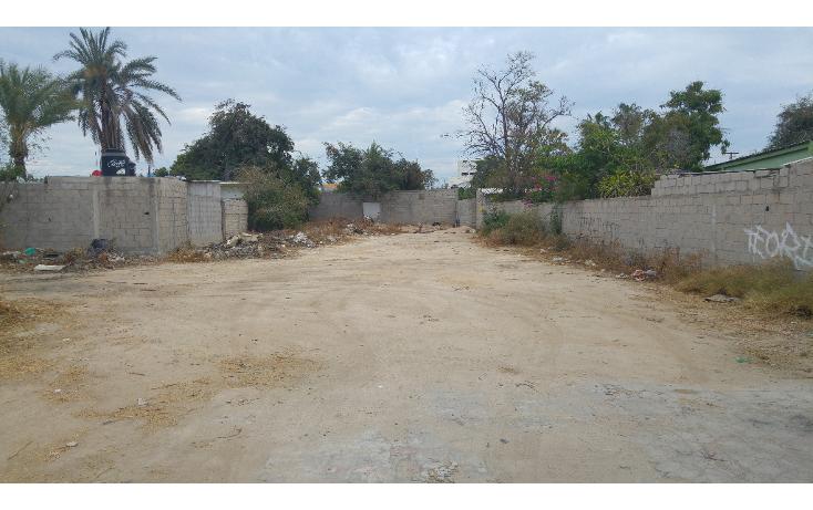 Foto de terreno comercial en venta en  , policentro palmira, la paz, baja california sur, 1775618 No. 01