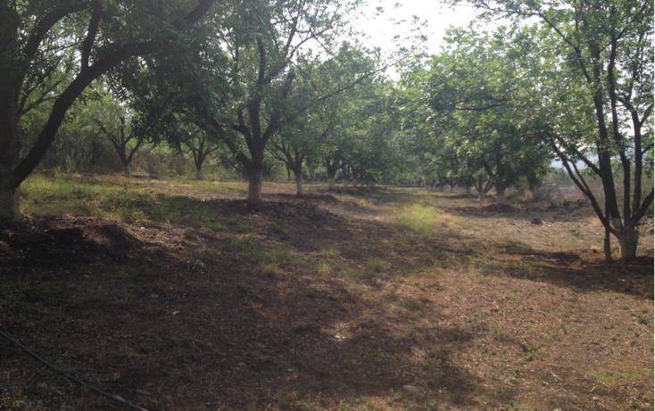 Foto de terreno comercial en renta en  , polígono empresarial santa rosa jauregui, querétaro, querétaro, 2035956 No. 04