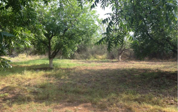 Foto de terreno comercial en renta en  , polígono empresarial santa rosa jauregui, querétaro, querétaro, 2035956 No. 05