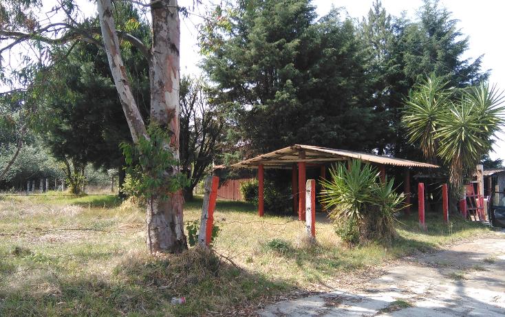 Foto de terreno habitacional en venta en  , popo park, atlautla, méxico, 2003138 No. 05