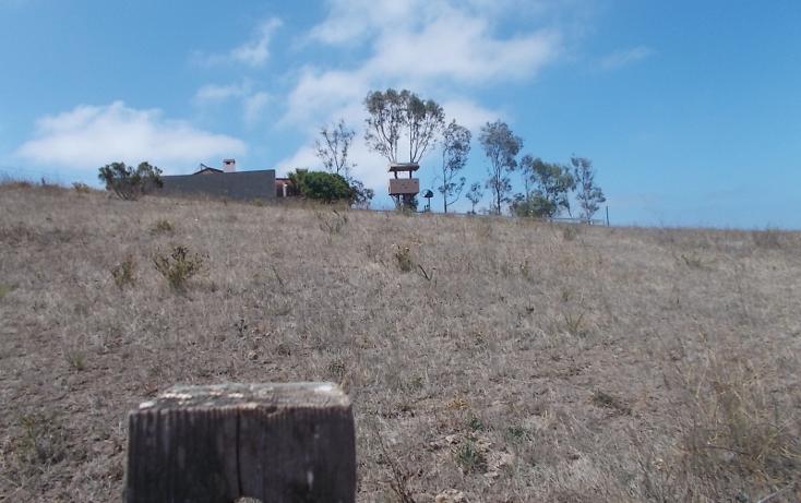 Foto de terreno habitacional en venta en popotla 0, popotla, playas de rosarito, baja california, 2645573 No. 14