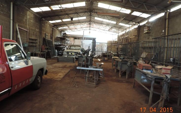 Foto de nave industrial en renta en  , popotla, miguel hidalgo, distrito federal, 1986503 No. 06