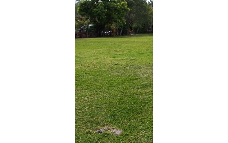 Foto de terreno habitacional en venta en  , popotla, miguel hidalgo, distrito federal, 2003016 No. 01