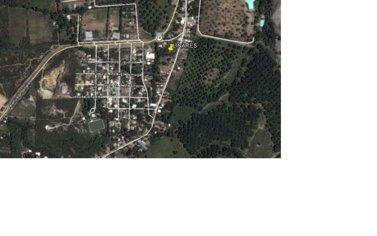 Foto de terreno habitacional en venta en, porfirio diaz, linares, nuevo león, 1722252 no 02